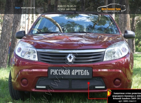 Renault-Sandero 2009—2013-Защитная сетка переднего бампера (с ДХО)-шагрень